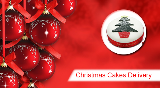 42_christmas cake delivery